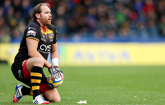 Andy-goode-wasps