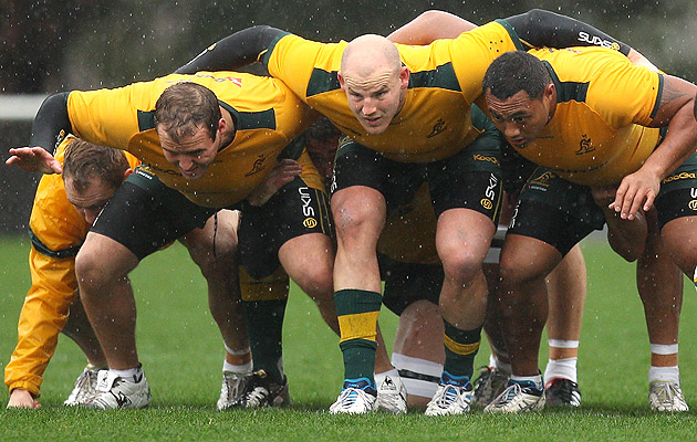Wallaby-scrum2