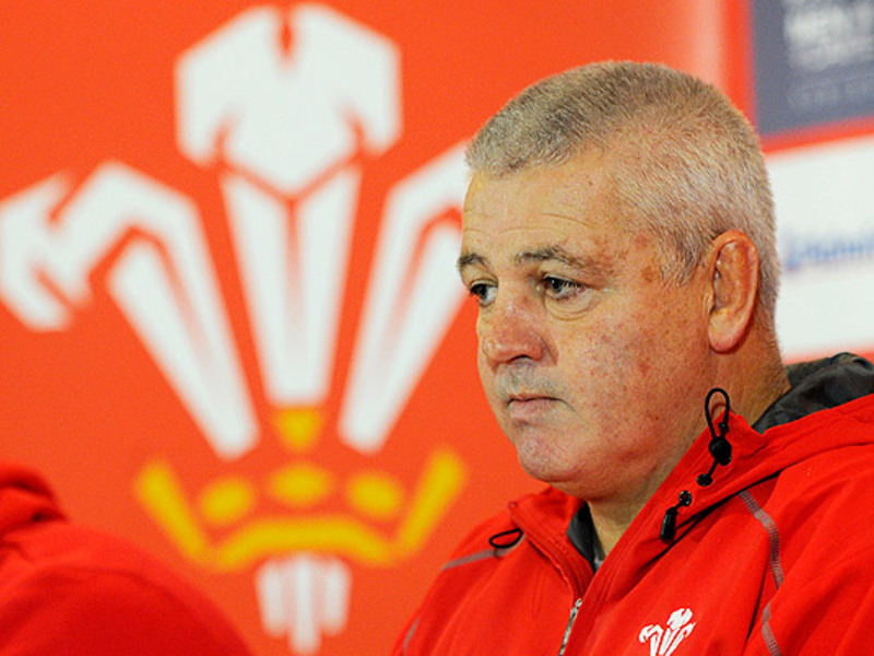 Large warren gatland media