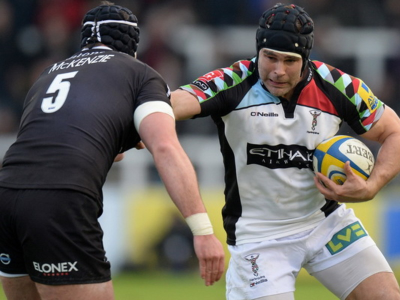 Large nickeasternewcastlefalcons
