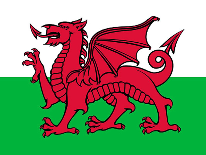 Large welsh flag