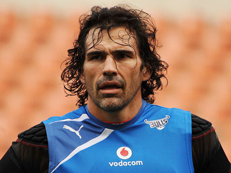 Large victor matfield bulls