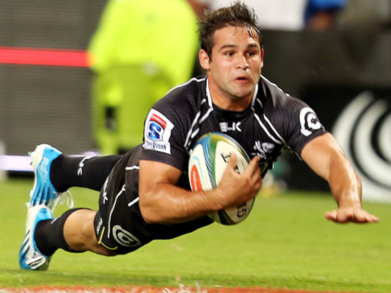 Large cobus reinach sharks try