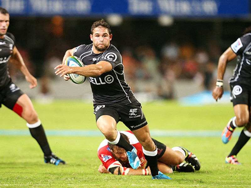 Large cobus reinach sharls v lion