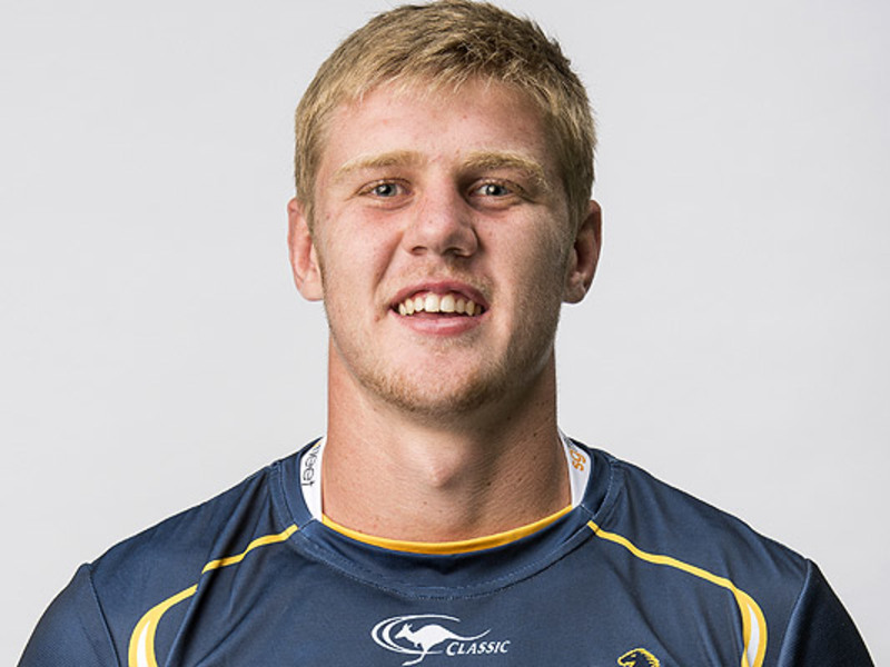 Large tom staniforth brumbies
