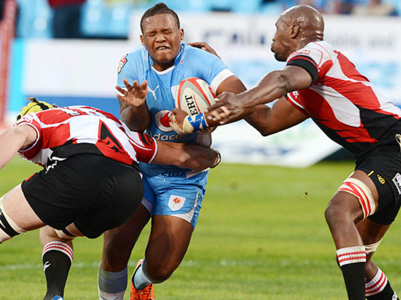 Large blue bulls v golden lions