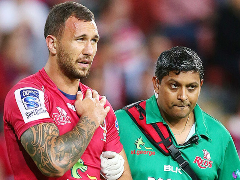 Large quade cooper reds injured