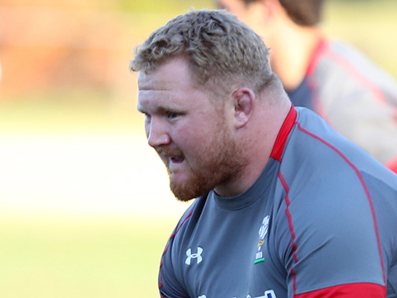 Large samson lee wales2