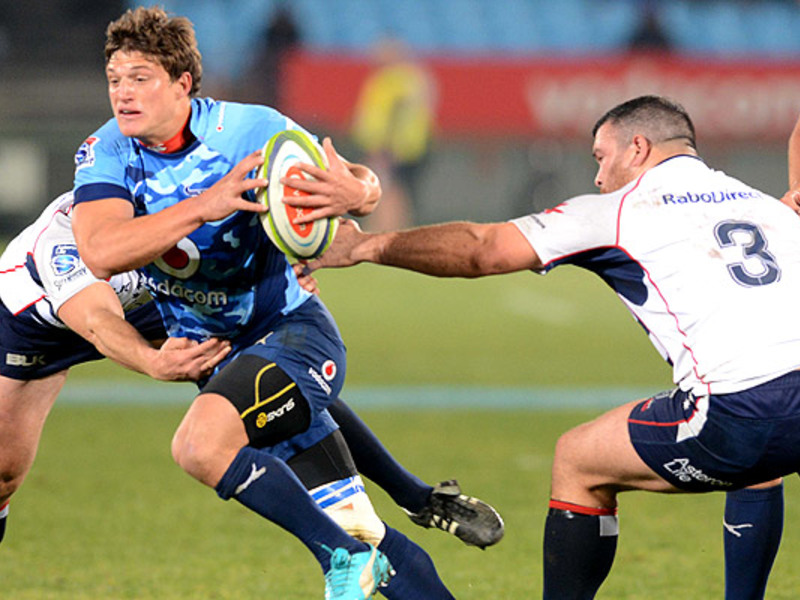 Large bulls v rebels