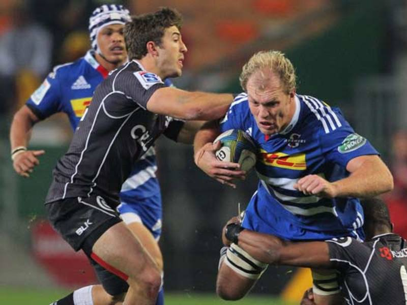 Large schalk sharks.jpg630