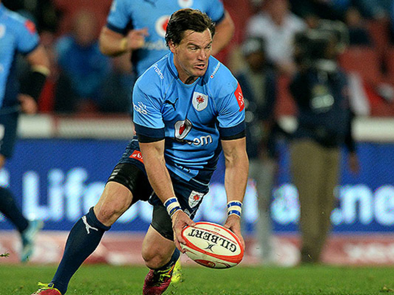 Large jacques louis potgieter blue bulls
