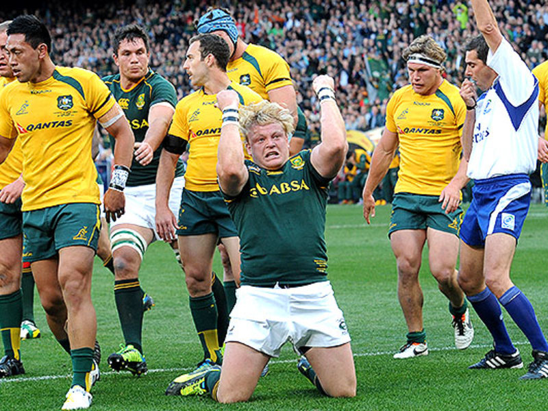 Large boks wallabies strauss