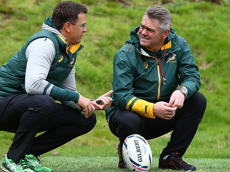 Large heyneke meyer springboks training 800