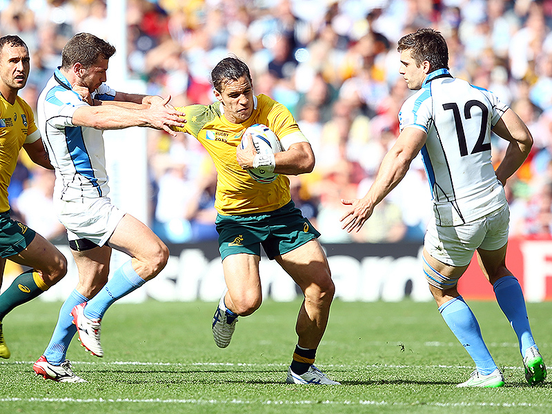 Large matt toomua wallabies 800
