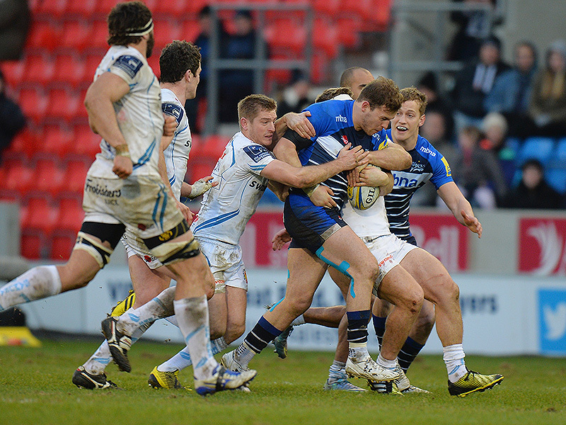 Large will addison sale sharks 800