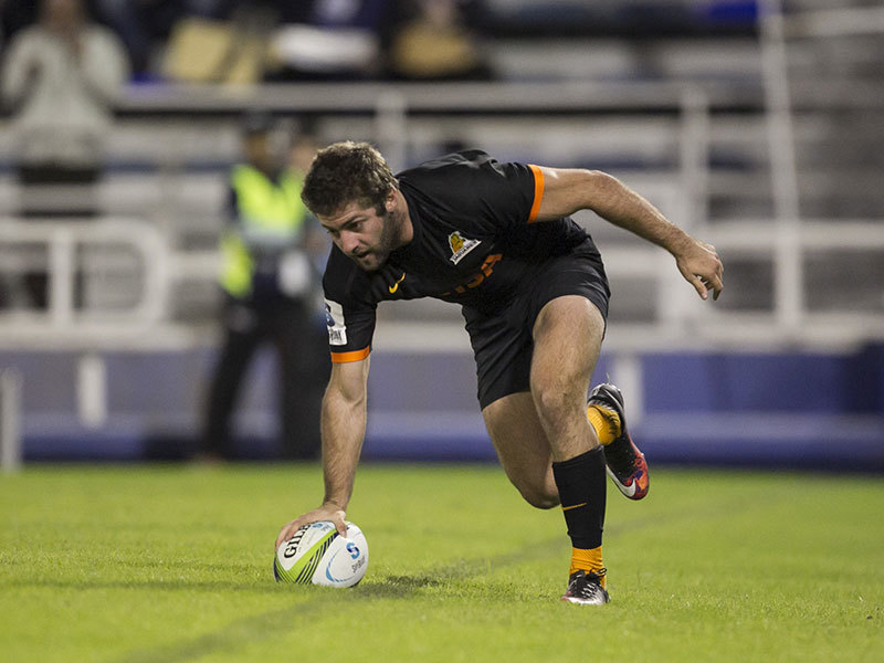 Large jaguares try 800