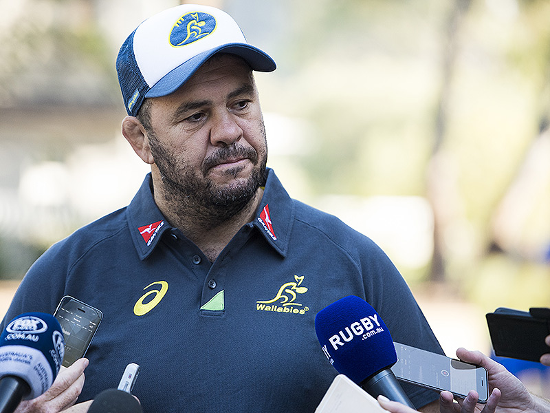 Michael cheika australia media 800