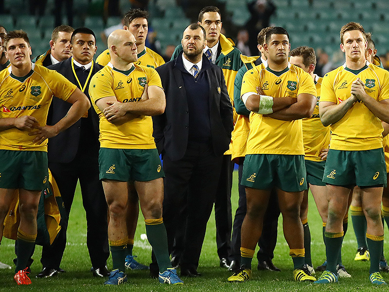 Michael cheika surrounded 800