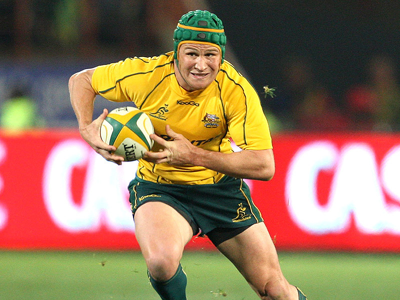 Large matt giteau wallabies 800