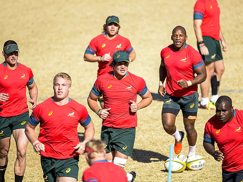 Large springboks group training 800