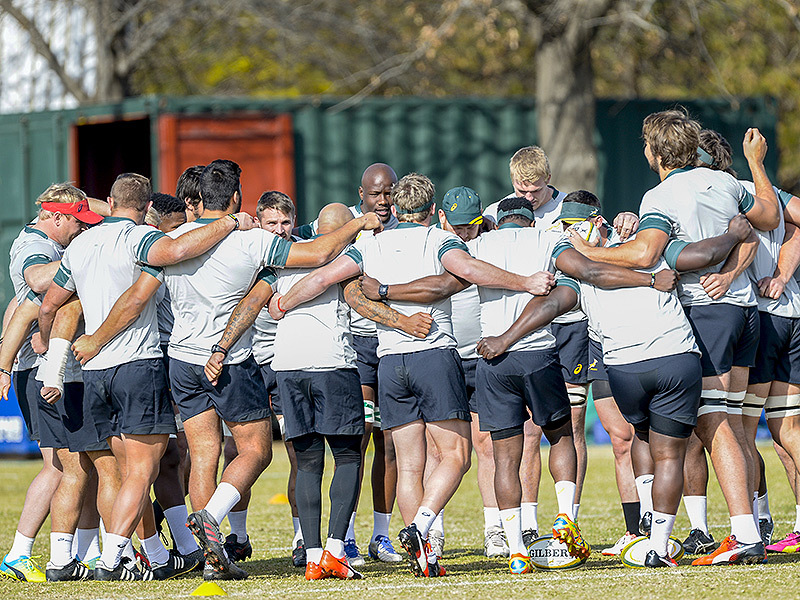 Large springbok team huddle 800