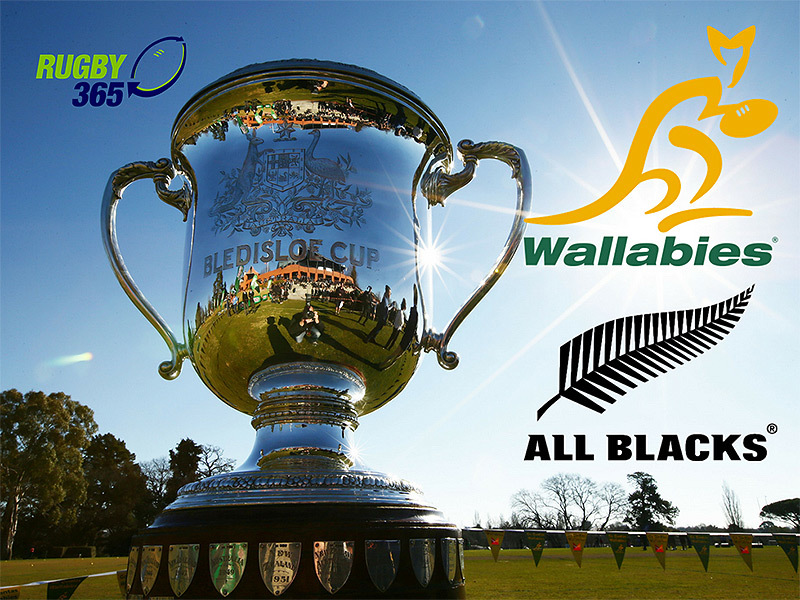 Large bledisloe cup with wallaby   all black logos 800