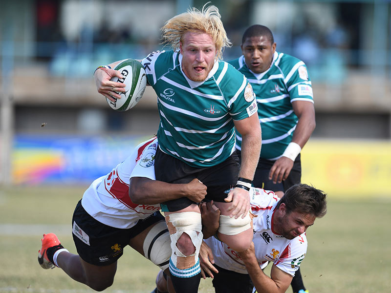 Large sias koen v golden lions 800