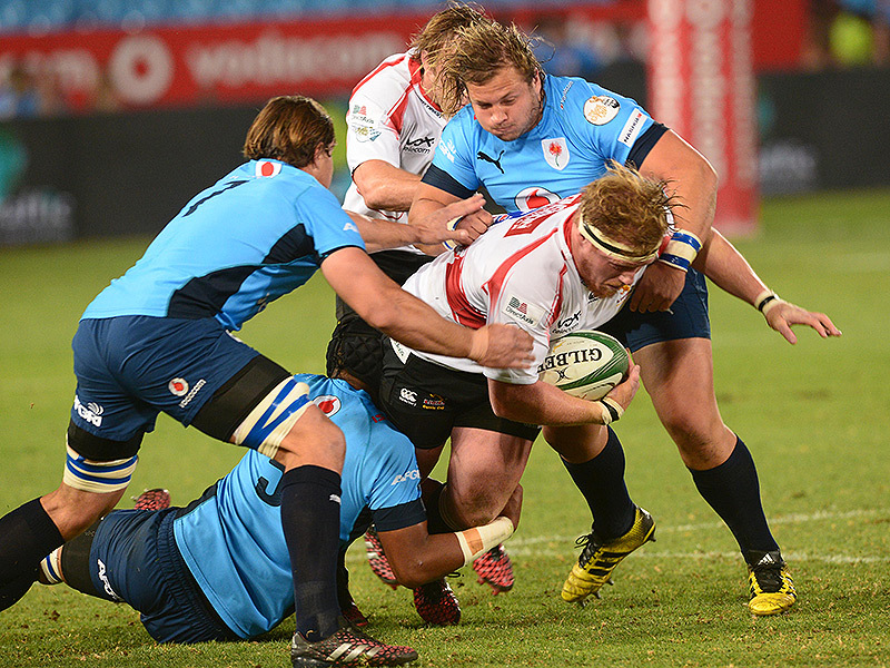 Large blue bulls v golden lions3 800