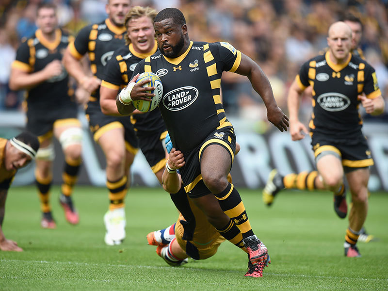 Large wasps v bristol 2016 800