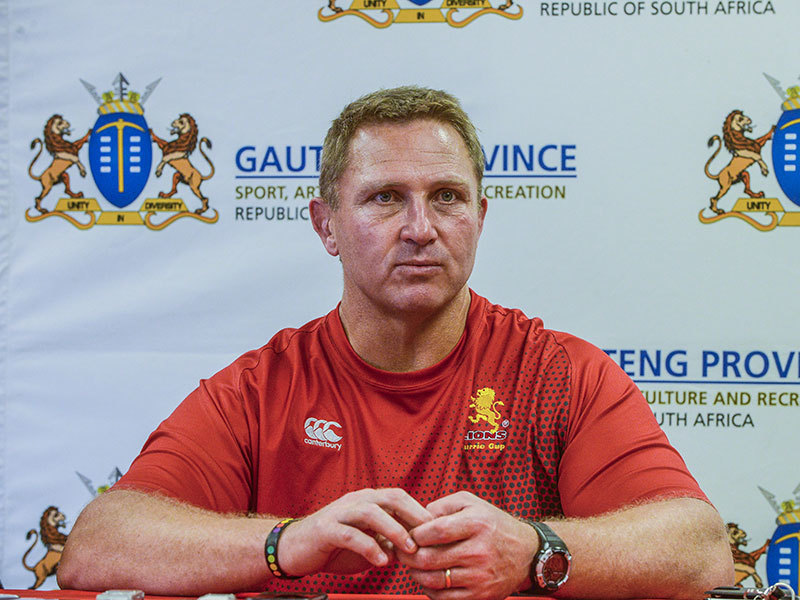 Large johan ackermann golden lions 800