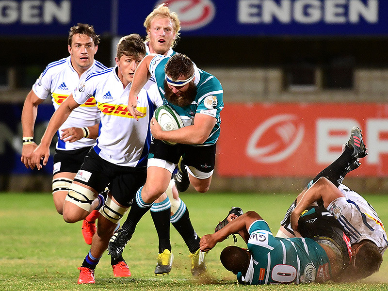 Large griquas v wp 800
