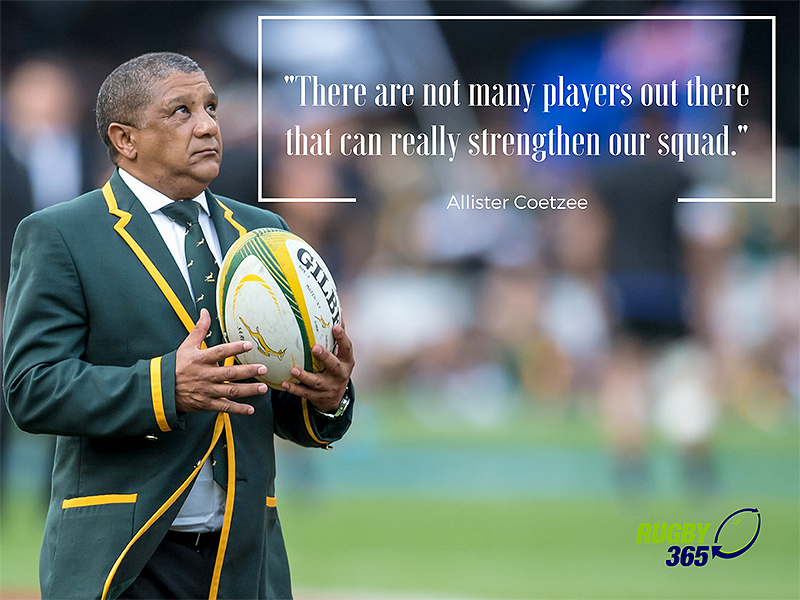 Large allister coetzee quote 800