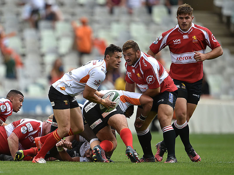 Large cheetahs v lions match3 800
