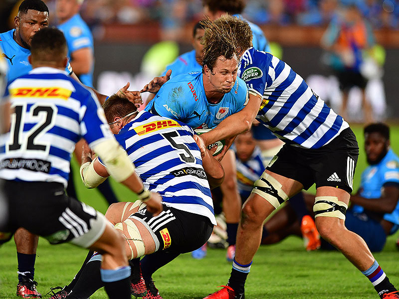 Large bulls v wp match 800