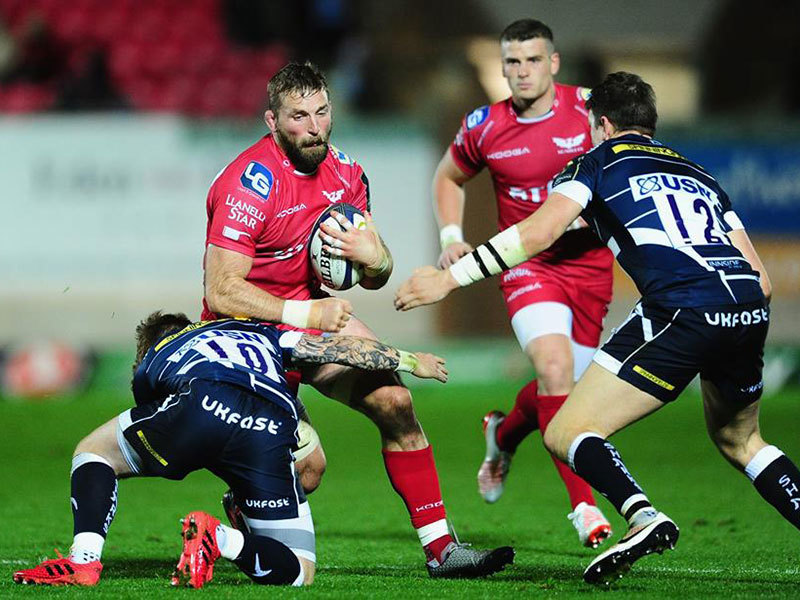 Large scarlets v sharks 800