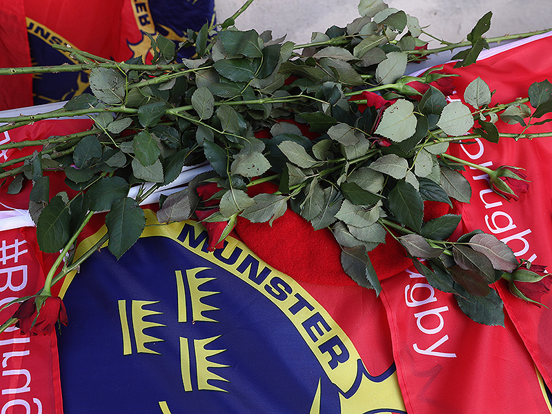 Munster flag and roses 800