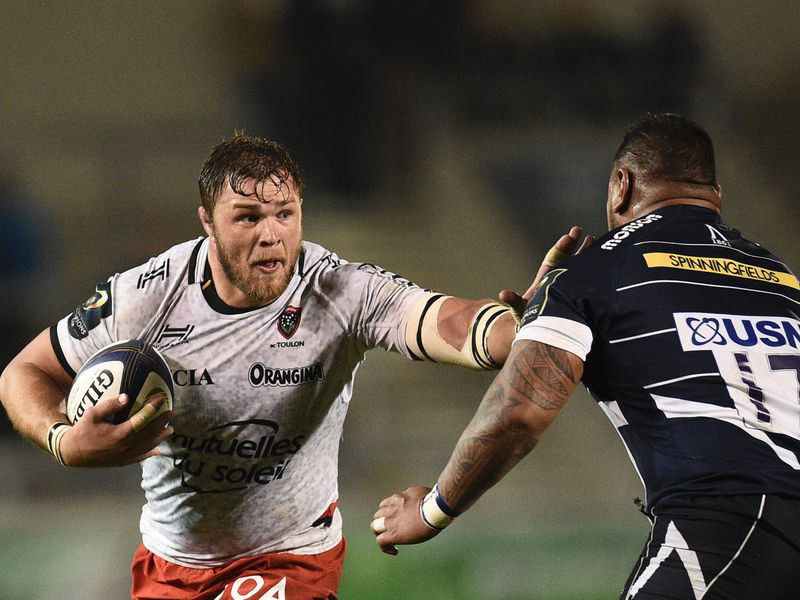 Large duane vermeulen toulon v sale sharks 800