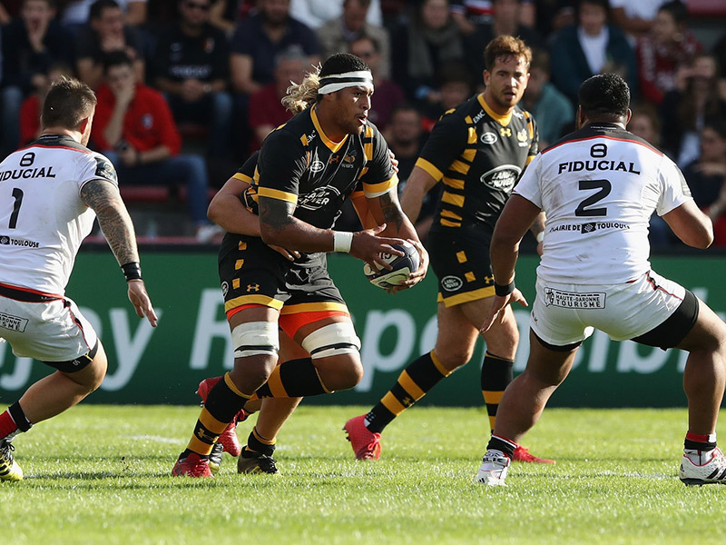 Large toulouse v wasps match 800
