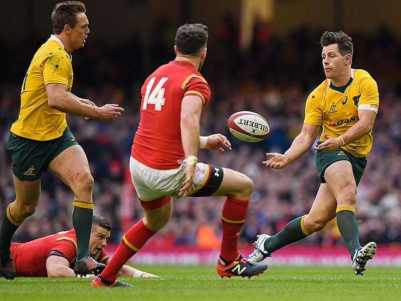 Large bernard foley wallabies pass 800