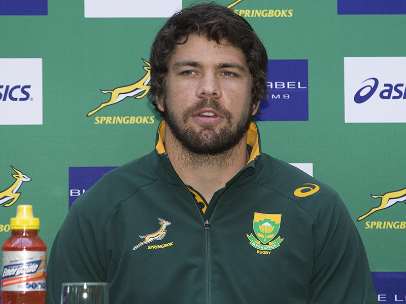 Large warren whiteley springboks media3 800