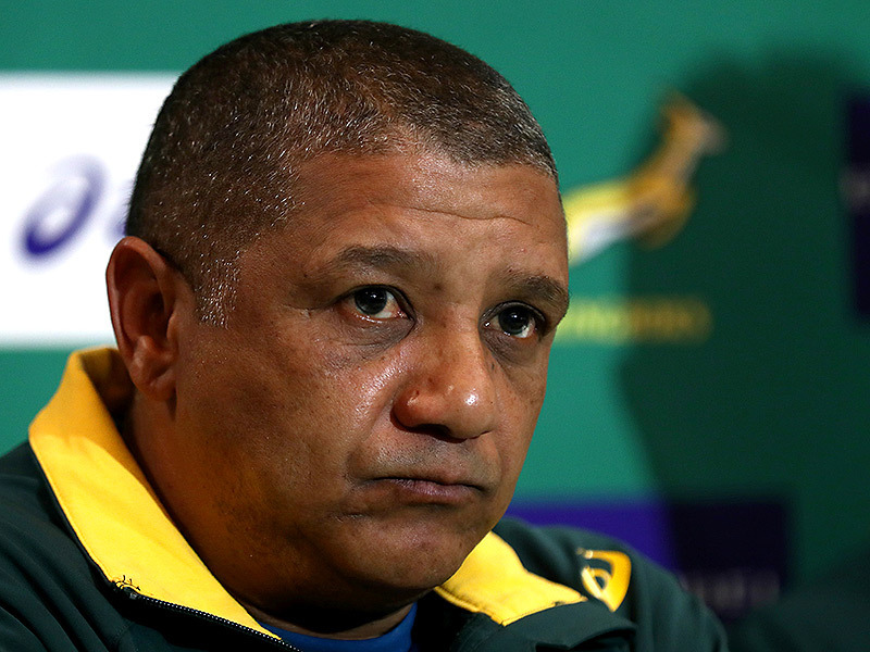 Large allister coetzee springboks media 800