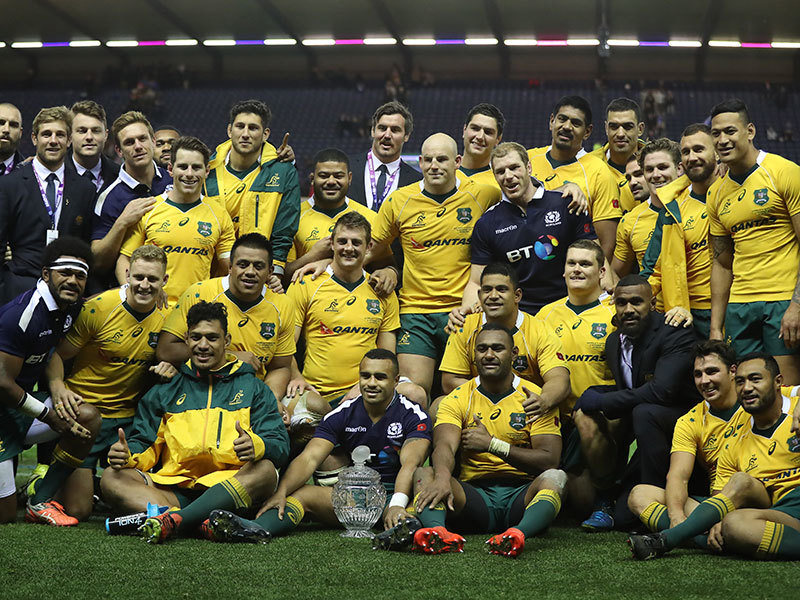 Large wallabies hopetoun cup 2016 800