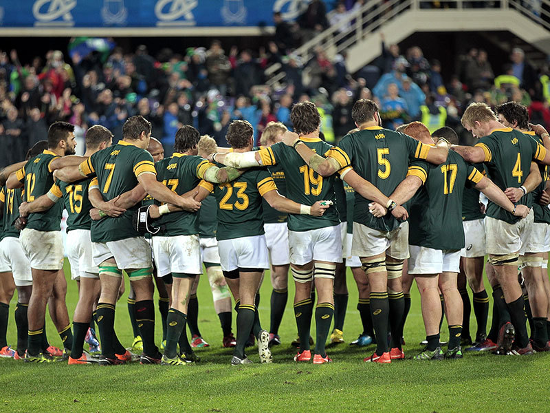 Large springboks huddle 800