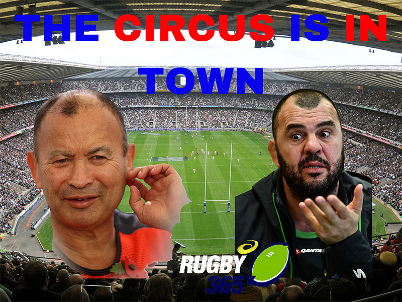 Large jones v cheika 800