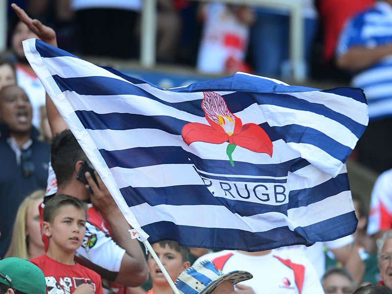 Wp rugby flag 800