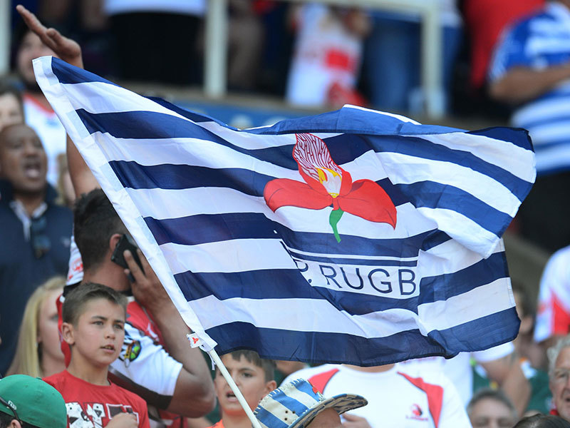 Large wp rugby flag 800