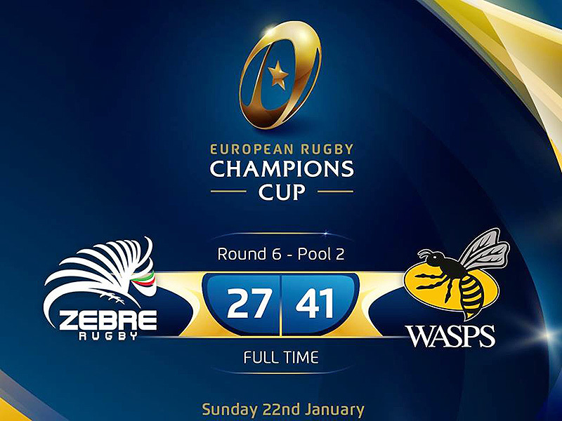 Large zebre v wasps result 800