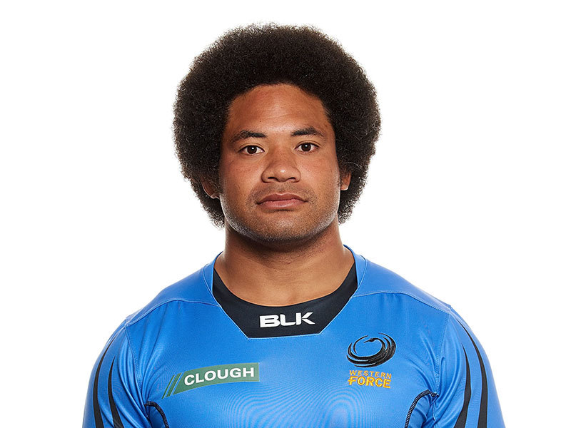 Large tatafu polota nau western force 2017 800