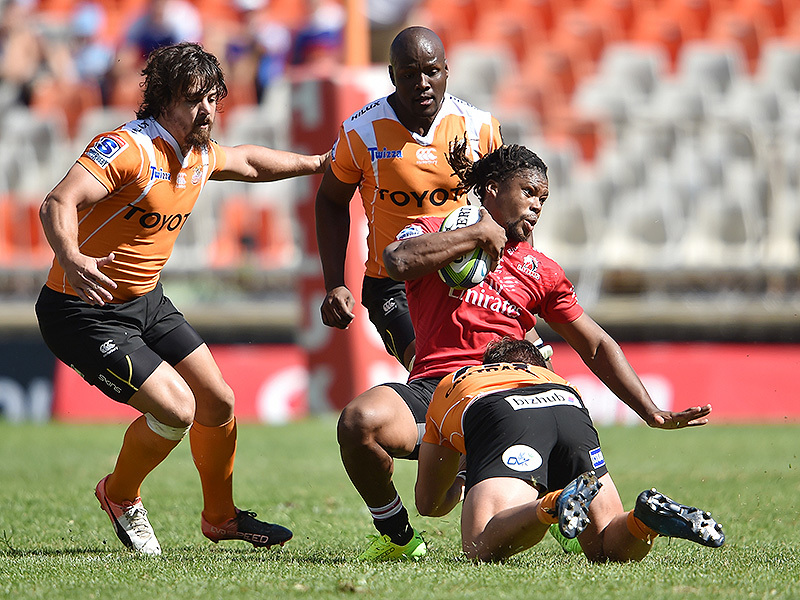 Large howard mnisi lions tackled 2017 800
