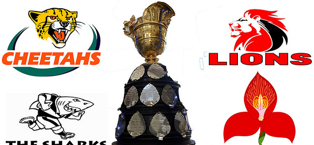 Mc article currie cup trophy with team logos 800